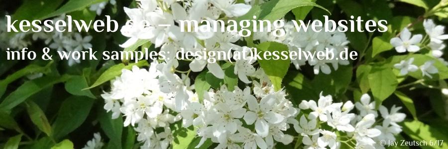 kesselweb.de – managing websites header image